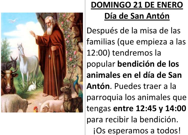 parroquia san anton 21 de enero.